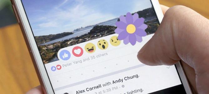 ¿Por qué Facebook ha experimentado con una flor morada?