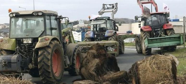 Lactalis, el fabricante que peor paga a los ganaderos franceses