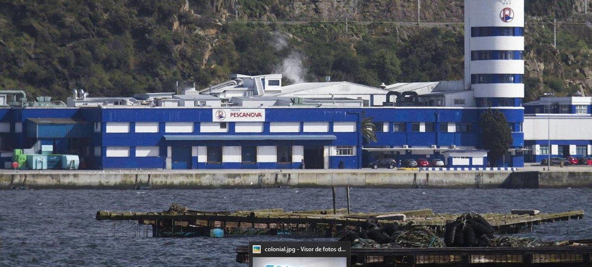Pérdidas de 37 millones para Nueva Pescanova