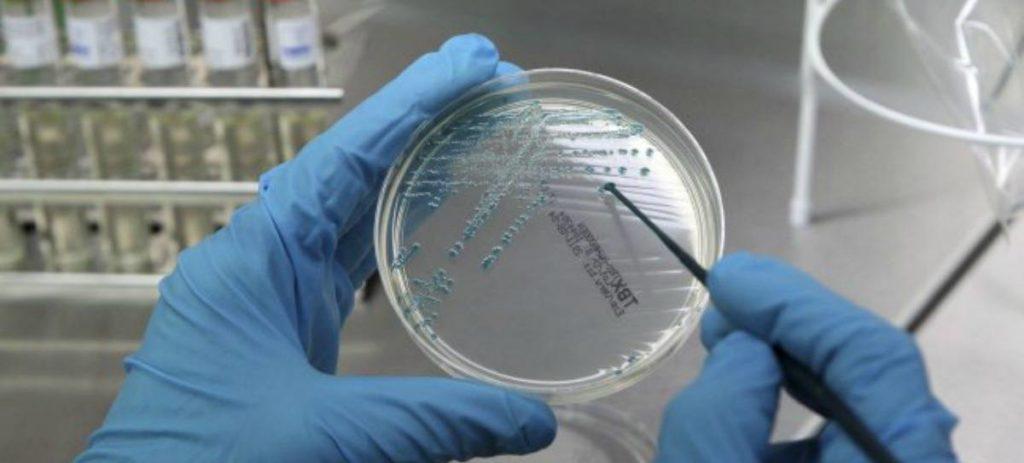 Cáncer: Un nuevo fármaco oncológico evita la metástasis y reduce el tumor