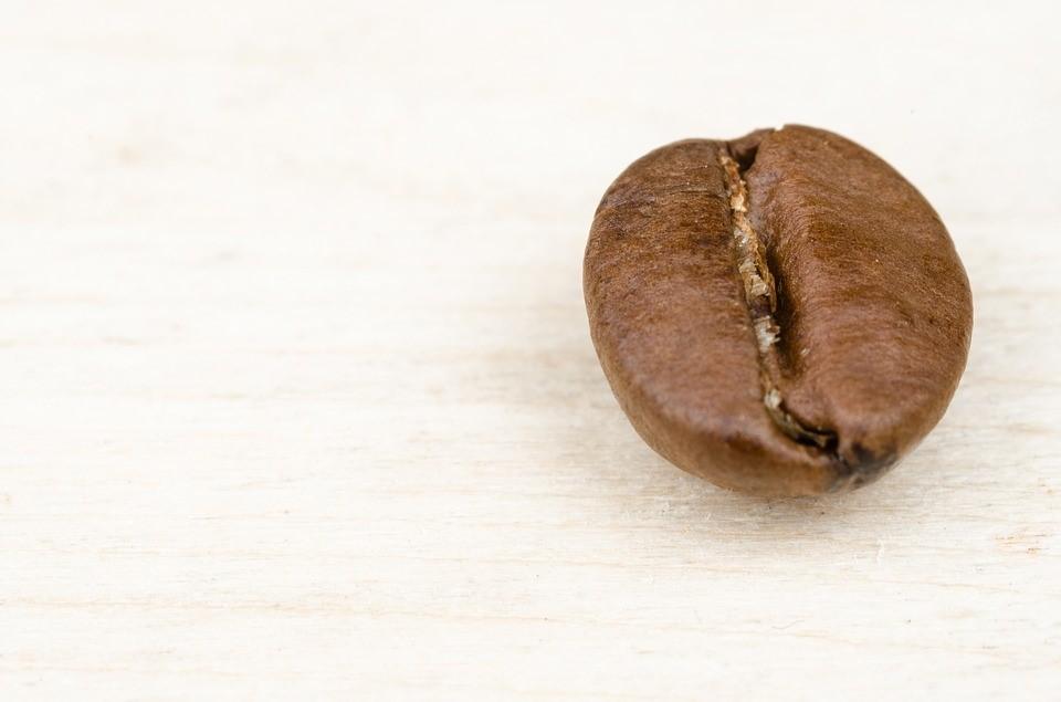 Empresas especialistas en fabricar el mejor café de la historia