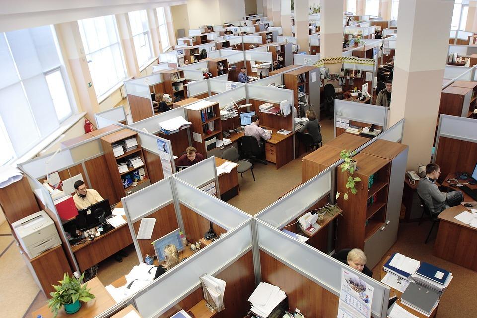 Lo que has de saber sobre el Servicio Público de Empleo Estatal