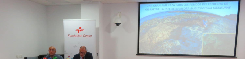 Fundación Cepsa y la Universidad de Sevilla comienzan un estudio para abordar la invasión del alga Rugulopteryx