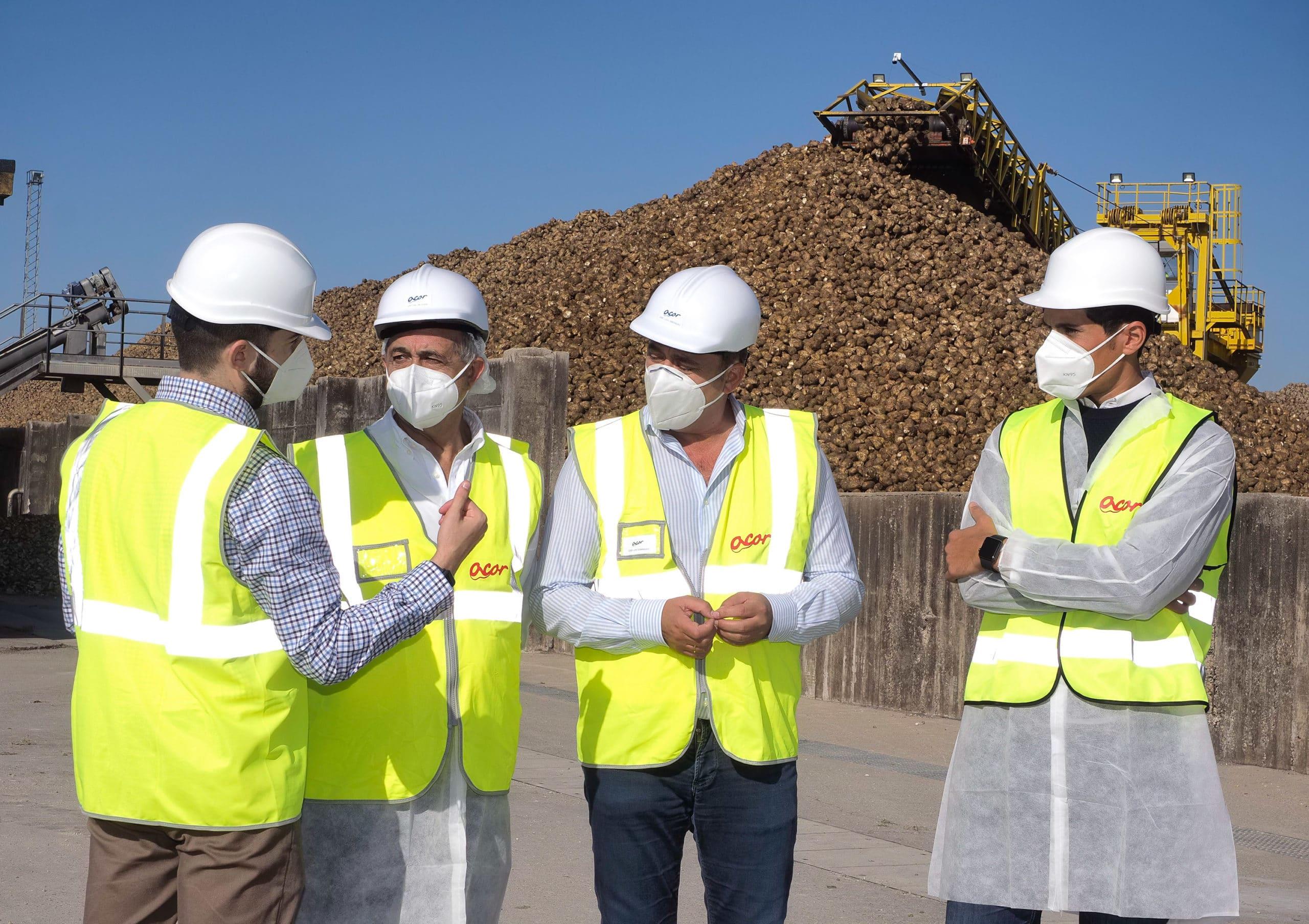 Remolacha 5G, proyecto de Acor, pretende contratar 13.000 hectáreas anuales